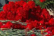 """На трассе Волгоград - Самара в аварии погибли генеральный директор  """"Горной поляны"""" и его замы"""
